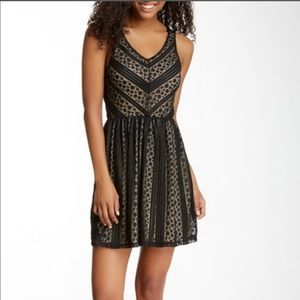 Everleigh || Lace Skater Dress